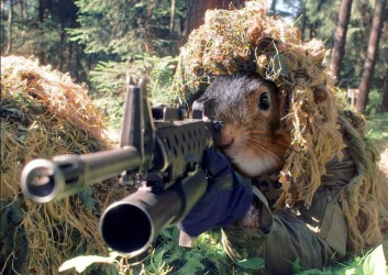 Sniper-Squirrel-30002
